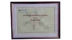 diploma-counseling-olistico-credes-beatrix-boldt-counselor-clara-serina-250