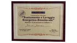 diploma-trattamento-lavaggio-energetico-emozionale-metodo-lee-beatrix-boldt-nader-butto-250